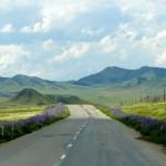Дорога длиною в жизнь