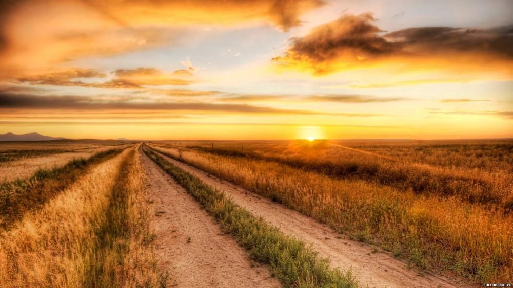 дорога, рассвет