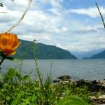 Телецкое озеро — врата Шамбалы? Ощущения, впечатления и проживание