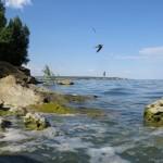 Цимлянск и Цимлянское водохранилище. Виндсёрфинг, абрикосы и странные камни.