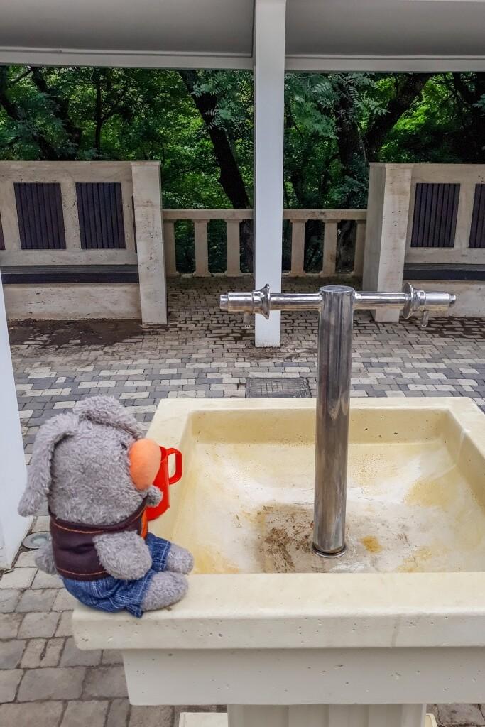 Железноводск, источник, минеральная вода Железноводск, лечебный парк, Славяновский бювет, гора Железная, Пипус